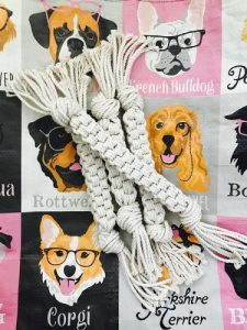 Marisa Kuntz Dog Leash | Virginia Beach Artist